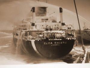 Elisa D'Alesio seppia