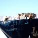 Porto Olbia,collisione Moby Wonder e Delfino Bianco.