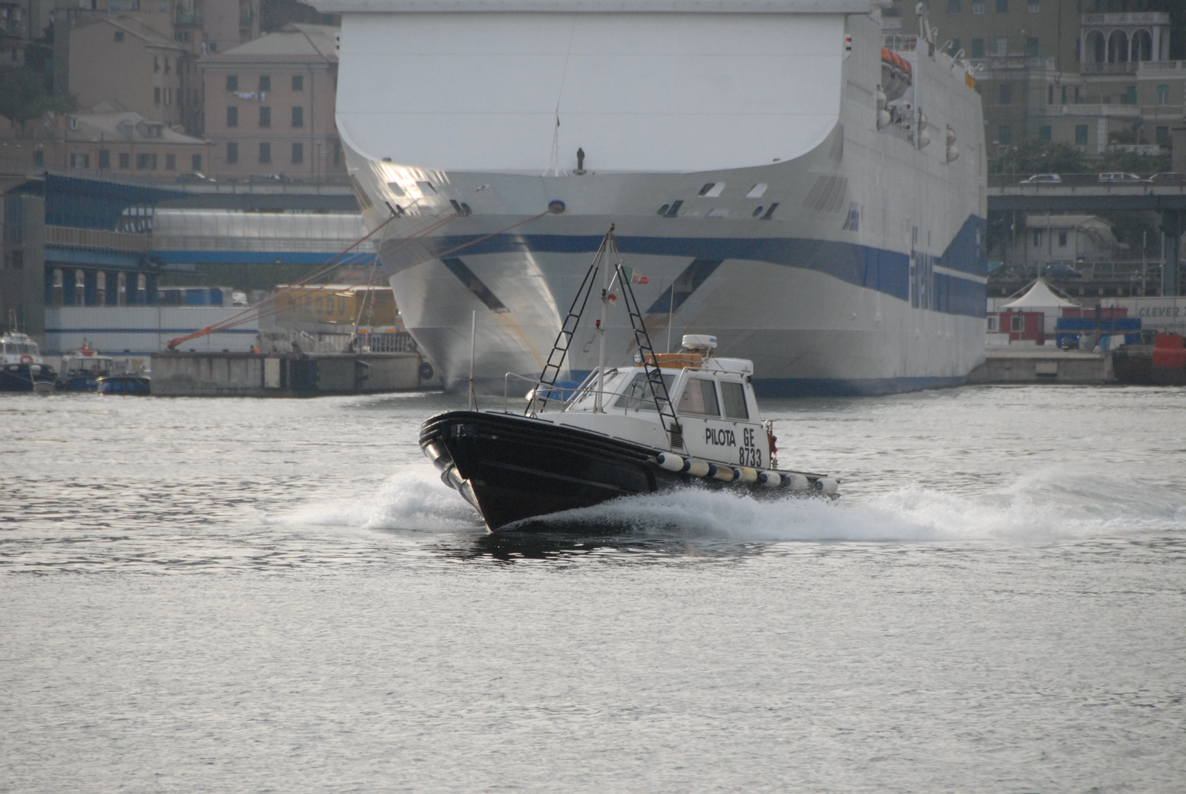 Maritime pilotage New rules on liability and its insurance